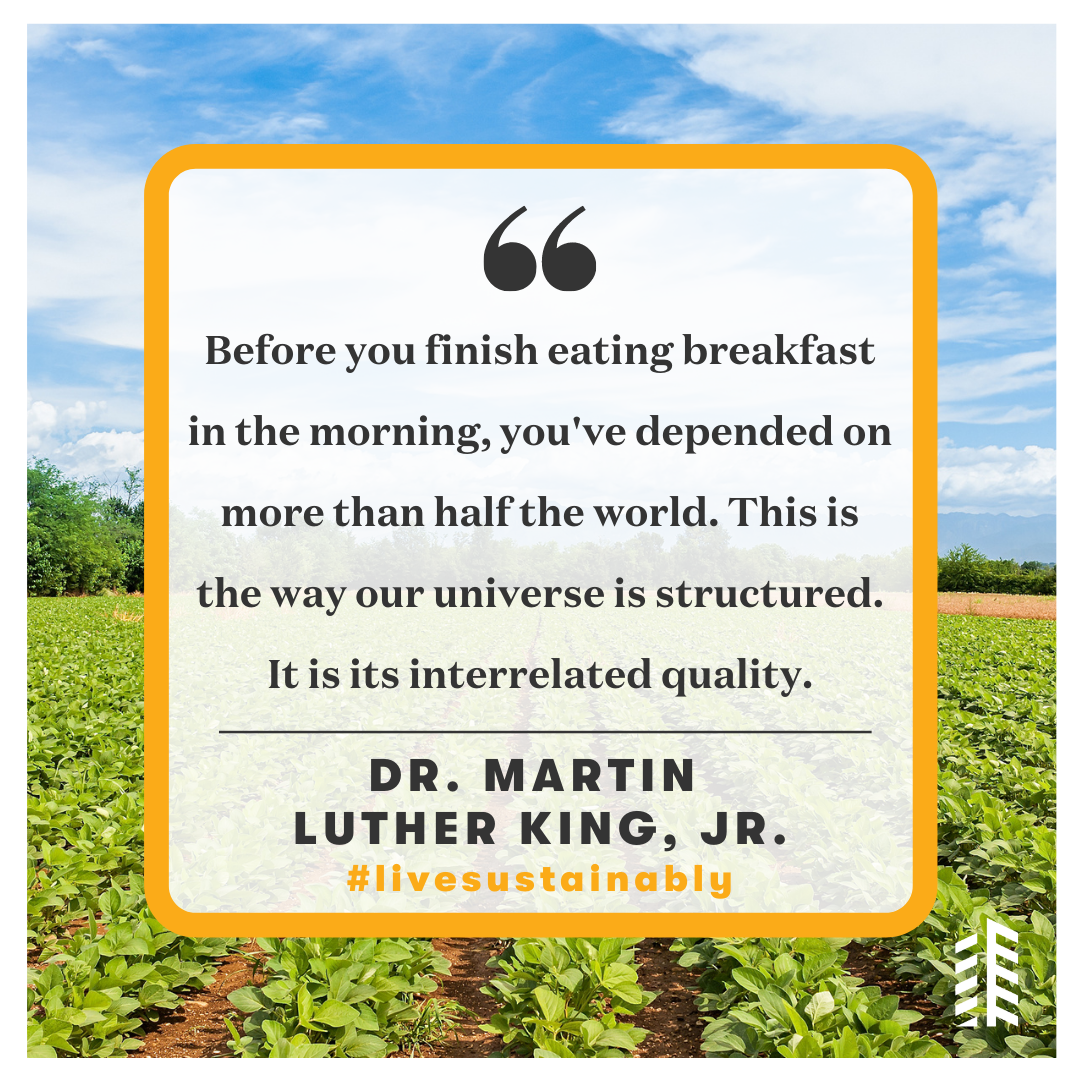 Dr. MLK Quote